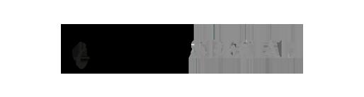 logo vetrispeciali